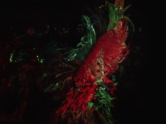 20181116 Herrenabend 2018-EVENT-007-Bearbeitet-NETZ-001